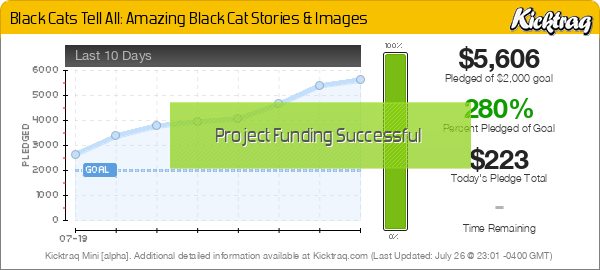 Black Cats Tell All: Amazing Black Cat Stories & Images -- Kicktraq Mini